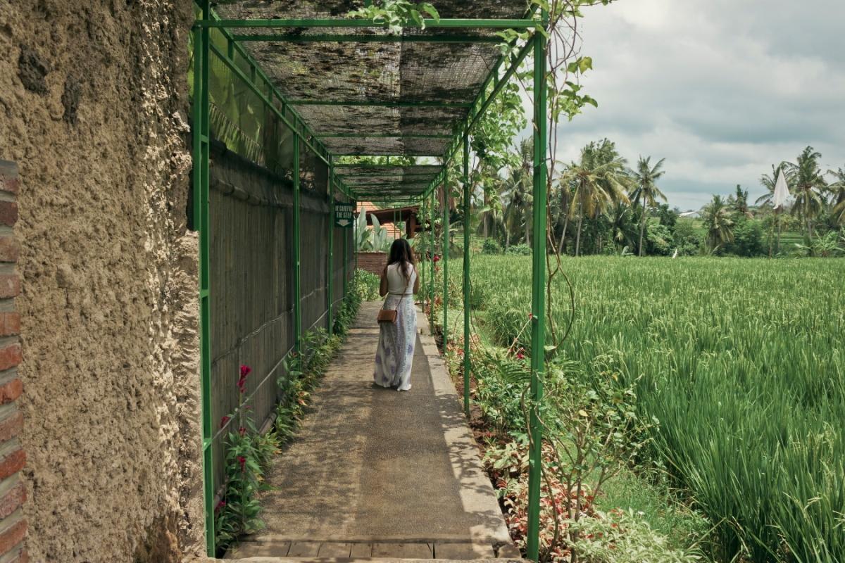 sphoto, sphotohi, sphotohawaii, indonesia, uluwatu, sanur, bali, vacation, paradise, canon, photography